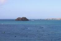Casiers à huitres (ou cultures d'algues?) dans la baie de Lampaul